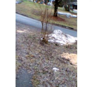"""""""Driveway After Thaw 12/22/2013"""""""