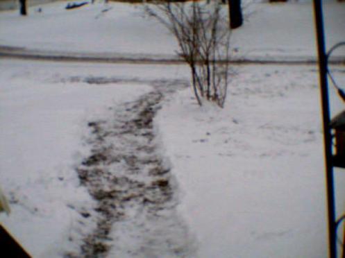 """""""Snowfall After Shoveling 12/14/2013"""""""
