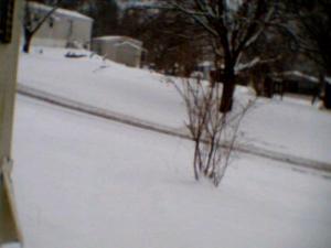 Snowfall Before Shoveling 12/14/13